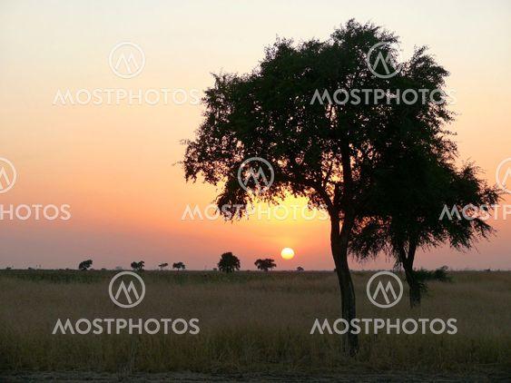 Southwest Sudan. Sunset. Landscape nature.