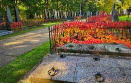 Zentralfriedhof Vienna