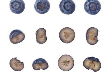 Set of fresh blueberries