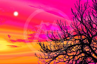 spain,canary islands, la palma :  tinizara countryside,...