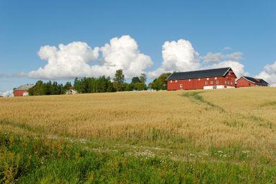Norwegian Farm