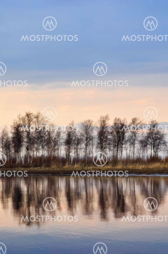 Sent aften ved havet birches afspejler i vandet