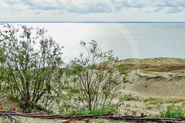 In the Dunes of Curonian Spit 06
