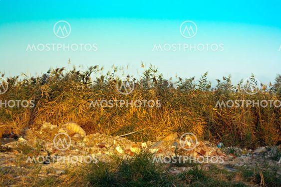 Skidt dumpet i landskabet
