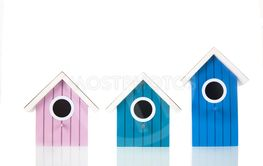 Colorful bird boxes