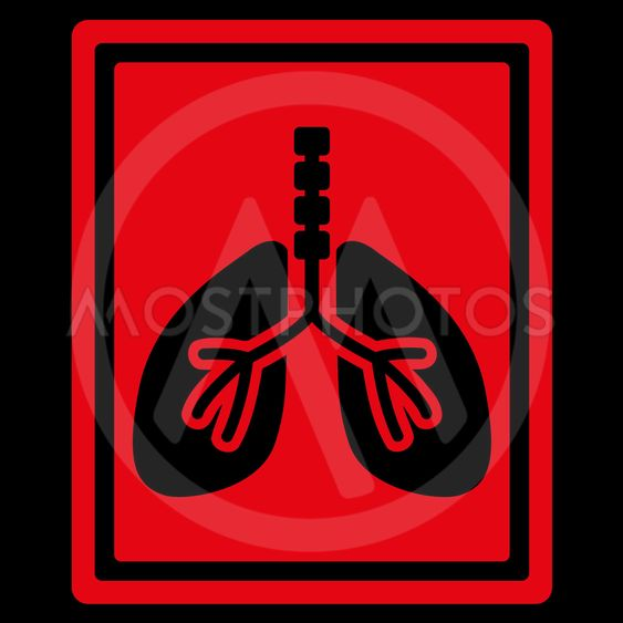 Lungs X-Ray Photo Icon