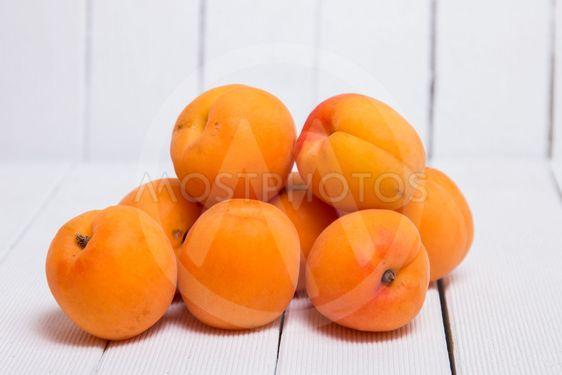 Armenian plum (Prunus armeniaca)