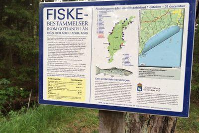fiske på Gotland