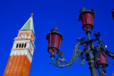 italy,venice : san marco place , campanile