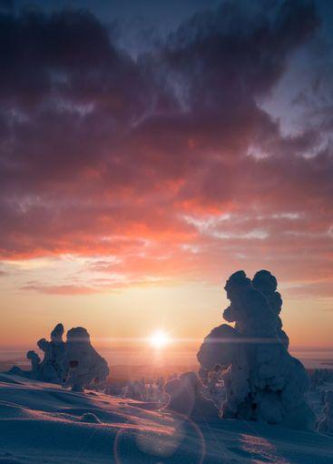 Beautiful winter landscape against the rising sun