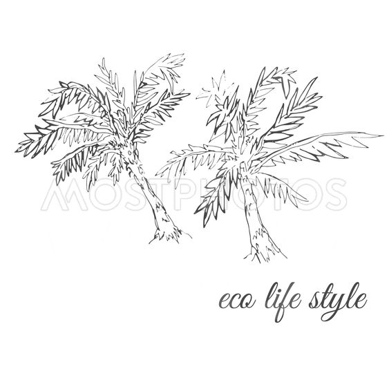 Two palm trees drawn in sketch style