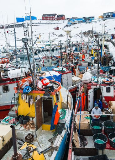 Fishing boats moored in a harbour