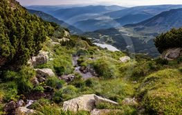 Wilderness of the Carpathian mountains