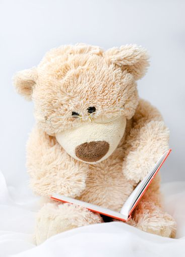 Teddy bear with glasses is reading a book