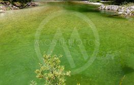 Sava Bohinjka in Triglav national park, Slovenia