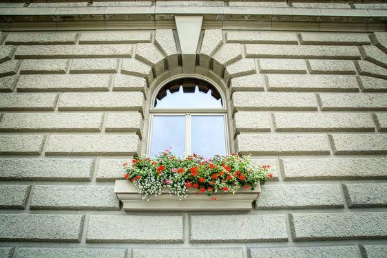 Window on the Bundeshaus