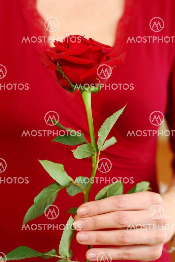 Kvinna rose