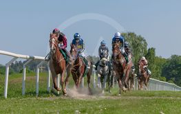 Horseracing during sunny weather at Nationaldagsgaloppen...