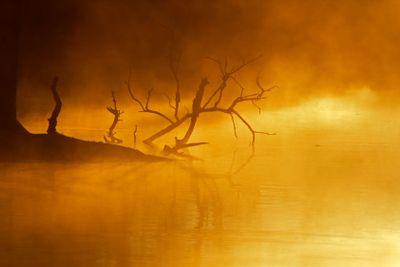 Mist over water