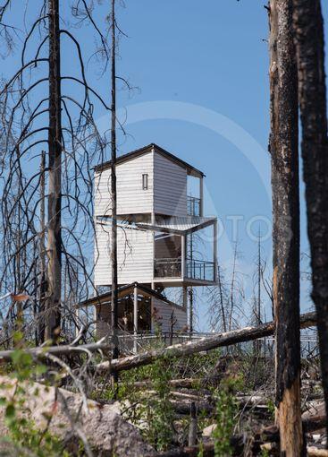 Hälleskogsbrännan 2019:19