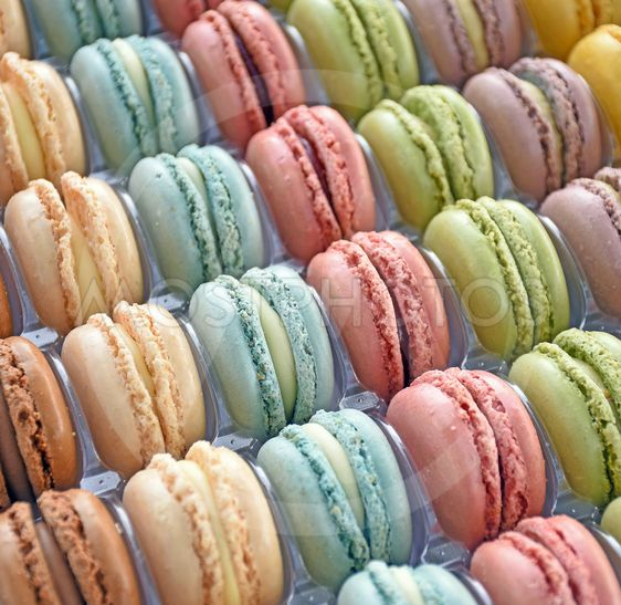 French macaroons in tray