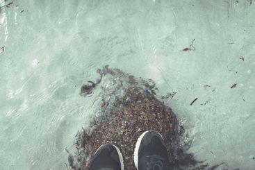 pies en una roca en la orilla del mar