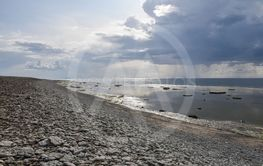 Kusten vid Neptuni åkrar på Öland