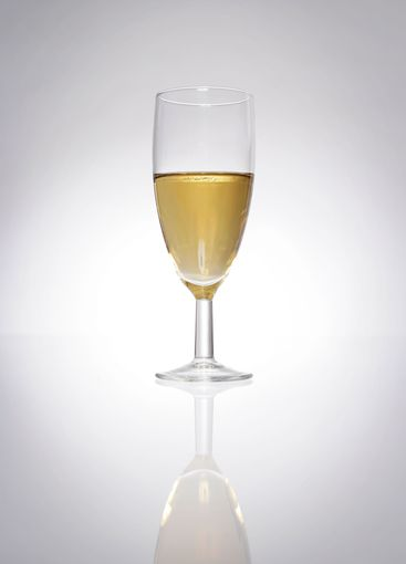 Champagne glass product photo