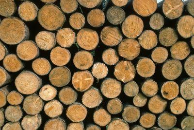 Holzstapel, Wood