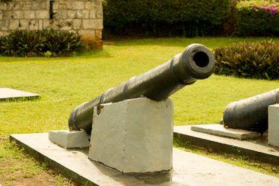 Fort Bennett Cannon