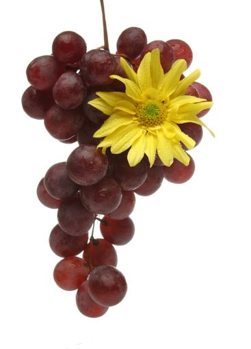 Bunch of grapes with a yellow flower