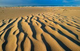 Scenic sandy beach