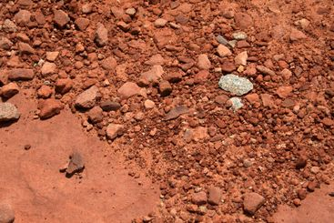 Red dirt background