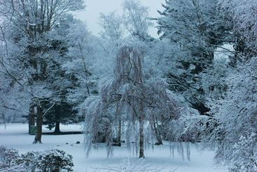 Beautiful snowscape in park of city Moers in Germany in...