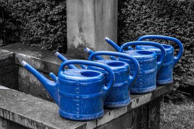 blaue Gießkannen