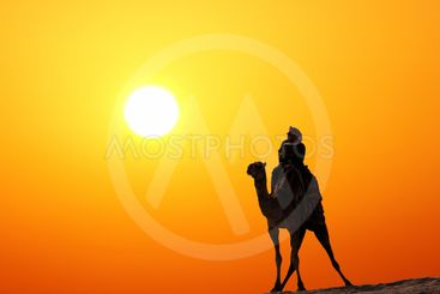 bedouin on camel silhouette against sunrise