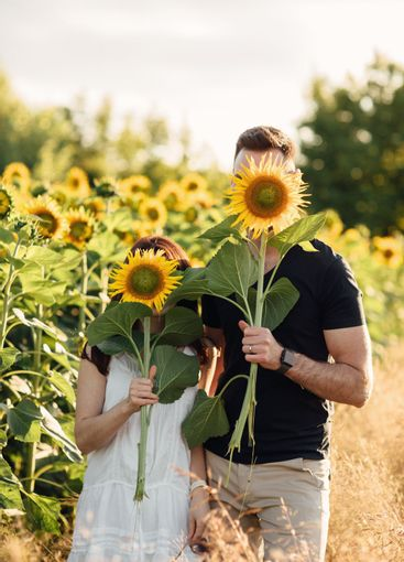 Beautiful couple having fun in sunflowers field. A man...
