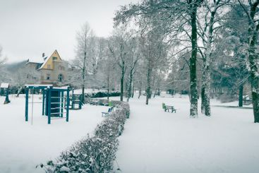 Winter scene in a public park