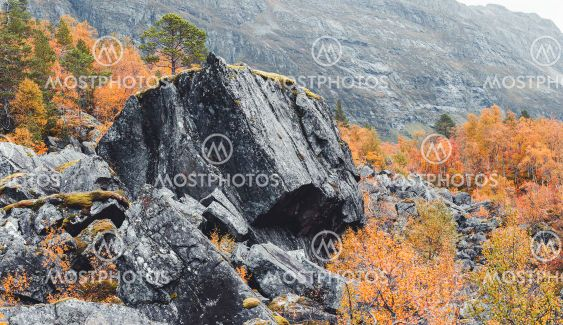 Big rock in autumn colored forest