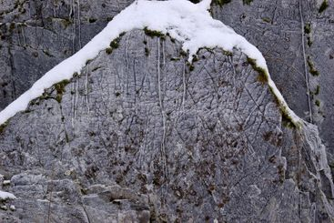 Ice-Covered Rock