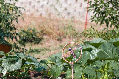 Copper Dragonfly Sprinkler