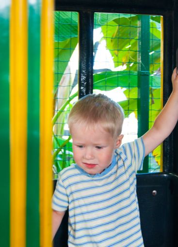 A three-year-old little fair-haired boy rides in a...