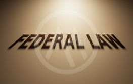 3D Rendering of a Shadow Text that reads Federal Law
