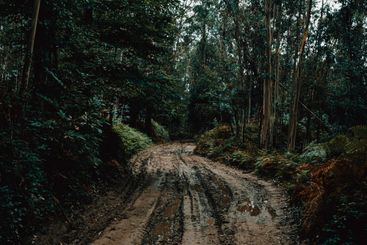Wide angle shot of a muddy road in the middle of the...