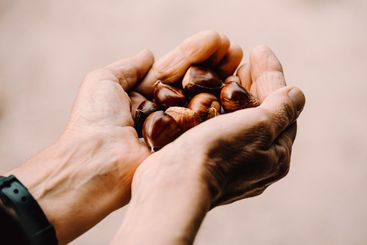 Close up of two old hands grabbing and offering a lot of...