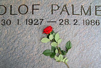Olof Palmes gravsten med en röd ros