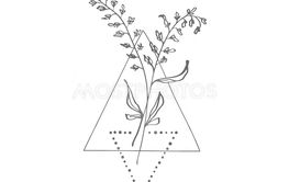 Hand drawn minimalistic branch with leaves and geometric...