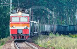 Freight train moves on the forest background.