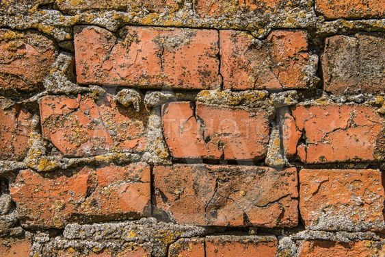 Old red brick wall texture with cracks and moss