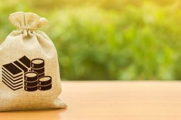 Money bag on nature background. Economics, salary....